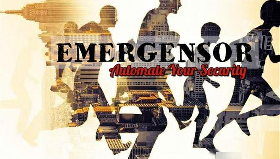 Emergensor's team photo